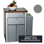 DISPENSA - CUCINA HOCHGLANZ ARGENTO PER VWT5 / 6 MULTIVAN CALIFORNIA BEACH