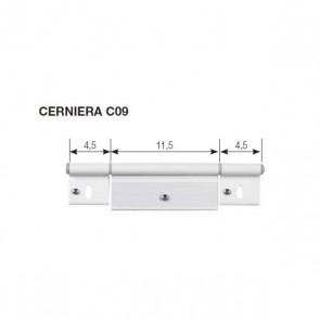CERNIERA C09 PER PORTA 195X48 MM.
